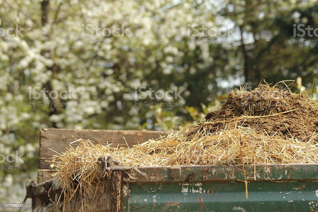 horse manure on trailer stock photo