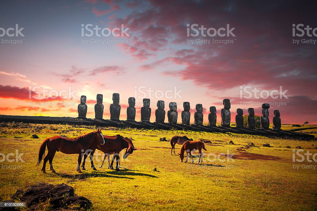 Horse on Easter Island stock photo
