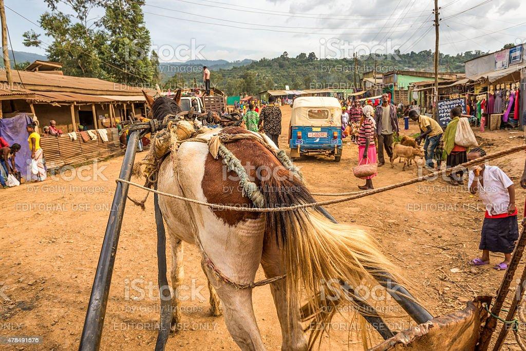 Horse pulling a cart accross a street in Mizan Teferi, Ethiopia stock photo