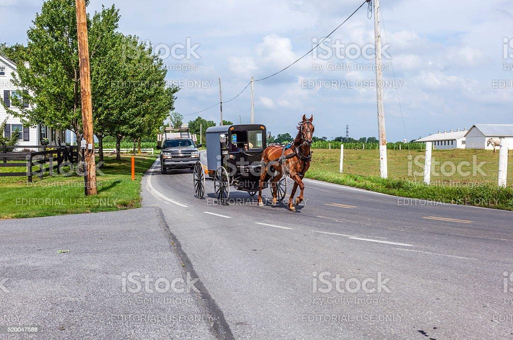 horse pulling a cart across a beautiful Saskatchewan landscape stock photo
