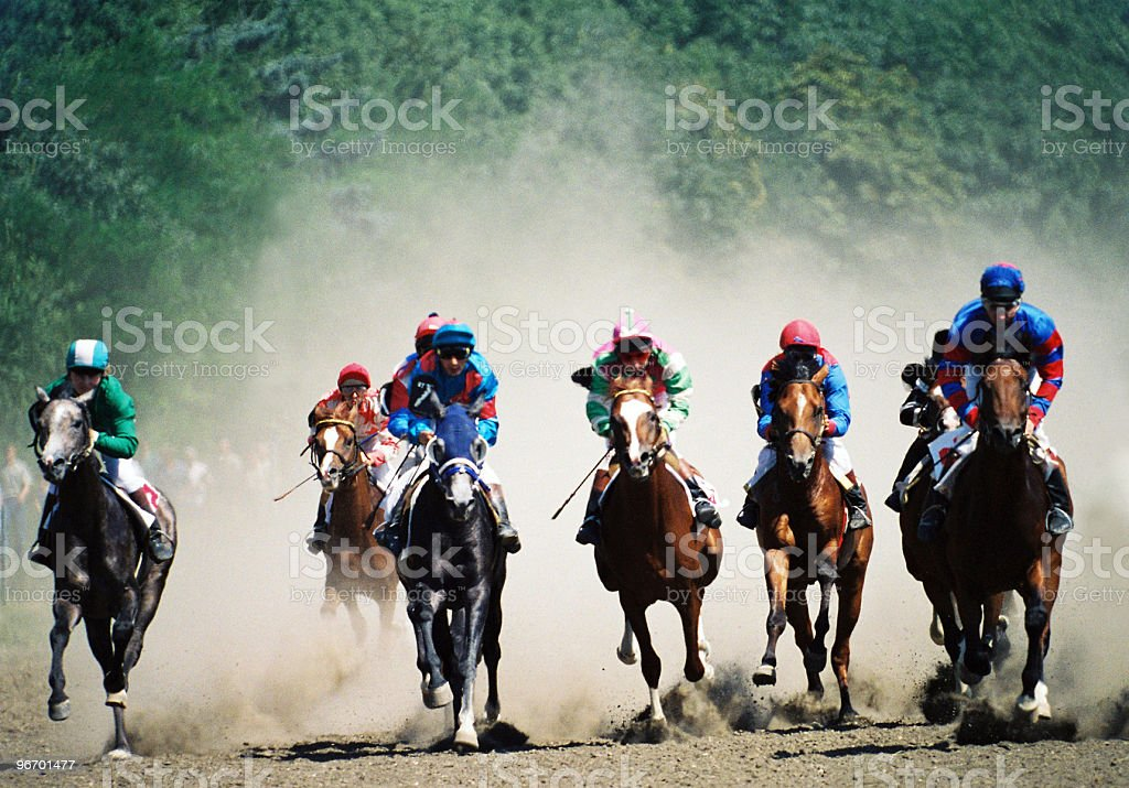 Horse race. stock photo