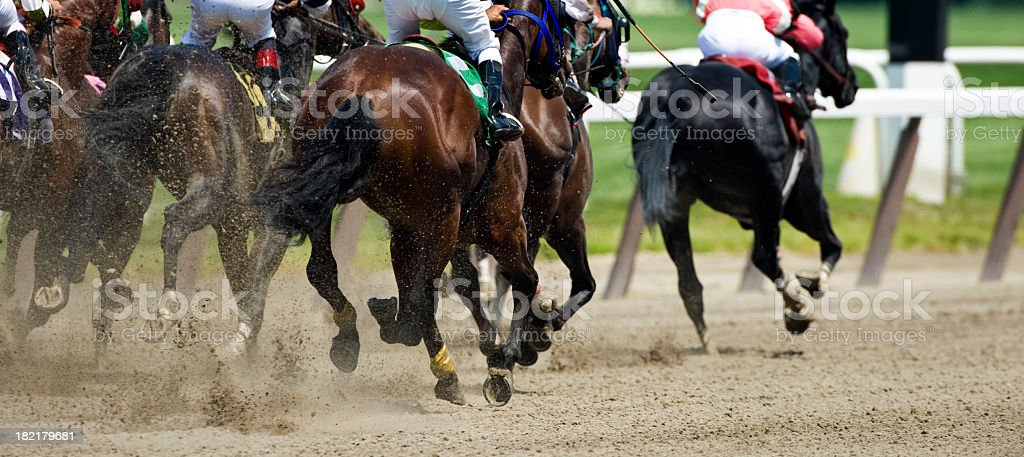 Horse Racing down the stretch they come stock photo