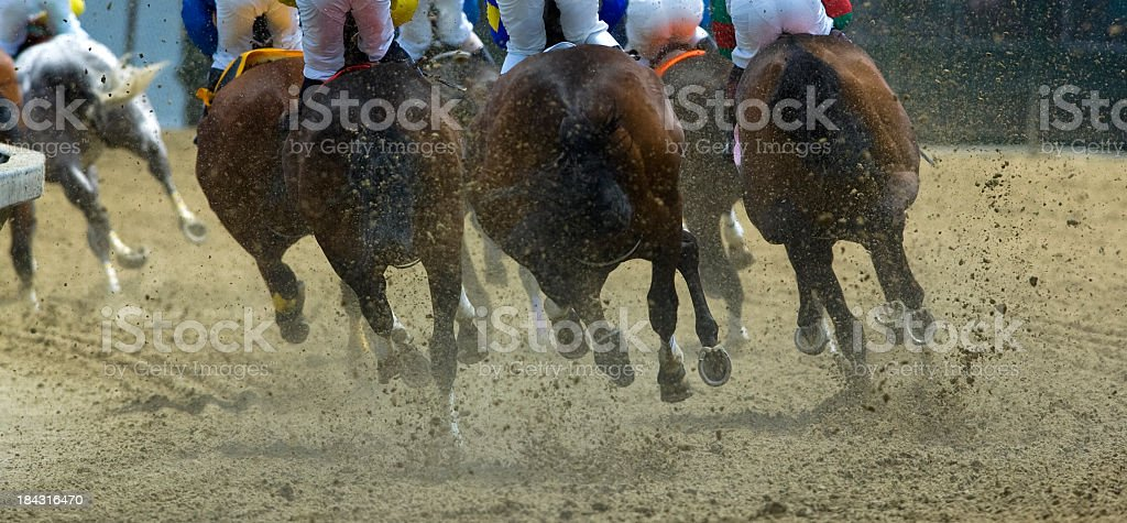 Horse Racing from behind stock photo