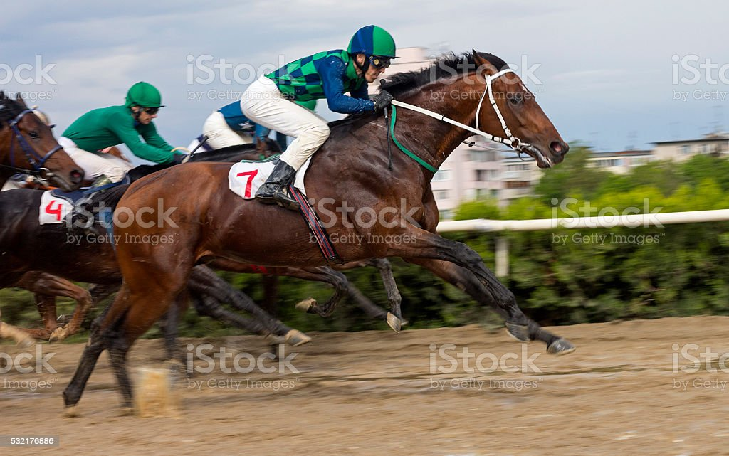 Horse racing  in Nalchik. stock photo