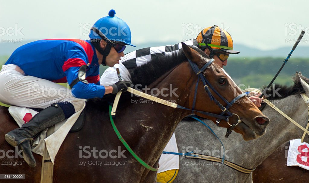 Horse racing in Pyatigorsk stock photo
