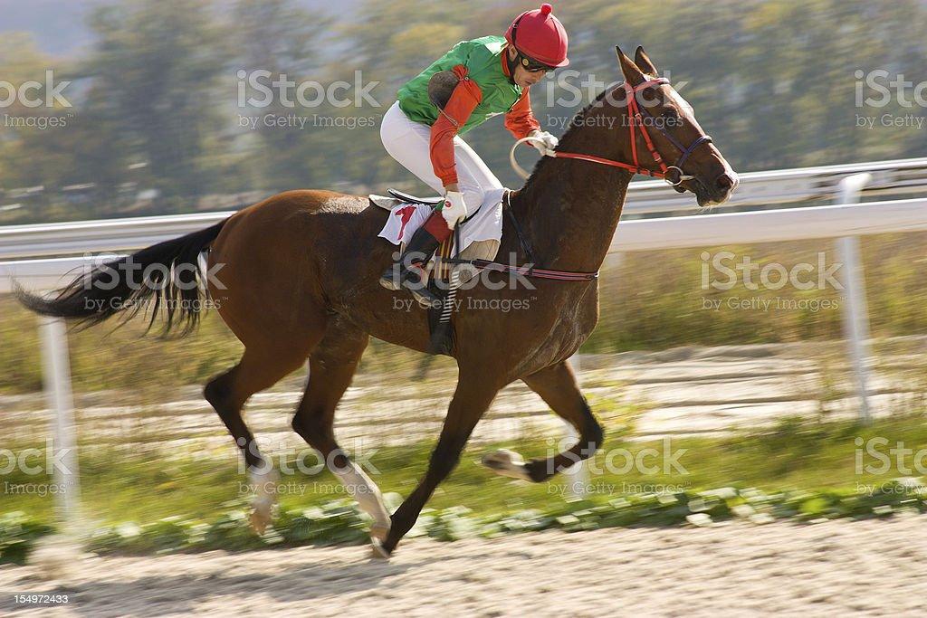 Horse racing. royalty-free stock photo