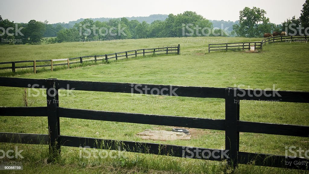 Horse Ranch stock photo