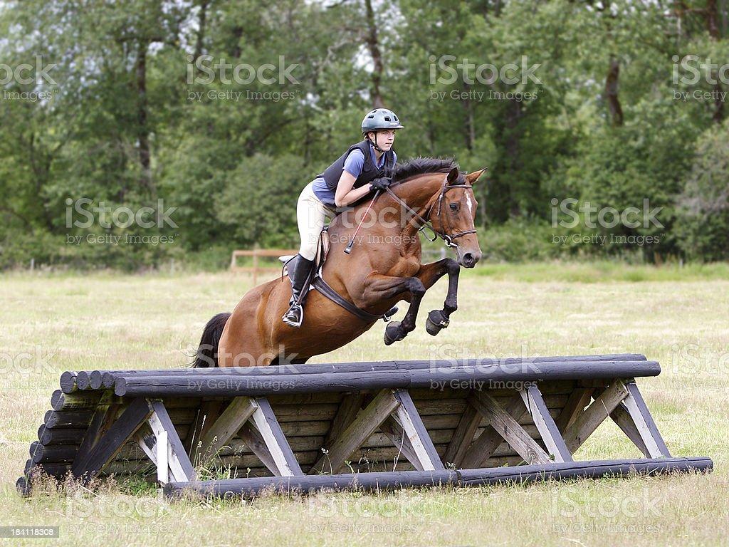 Horse & Rider Navigating Roll Top Jump stock photo