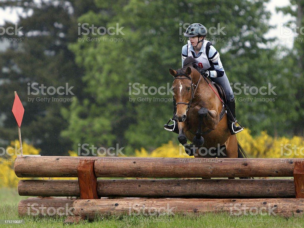 Horse & Rider Navigating Stacked Log Jump stock photo