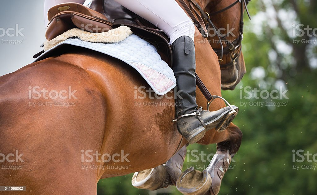 Horse riding dressage stock photo