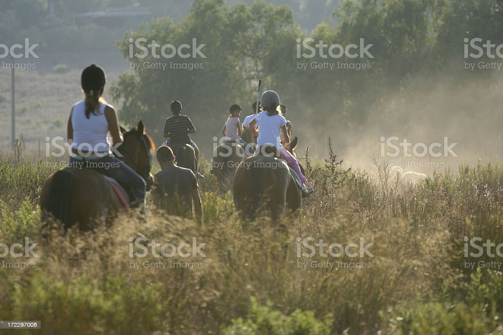Horse riding in the bush stock photo