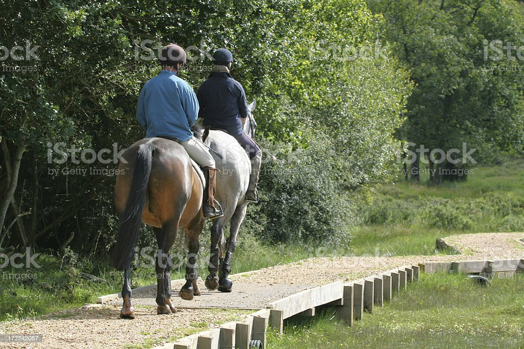 horse riding in the new forest stock photo