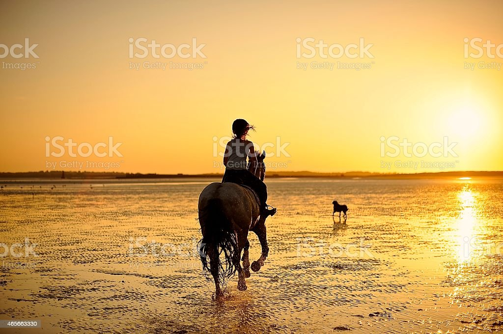 Horse riding into the sunset stock photo