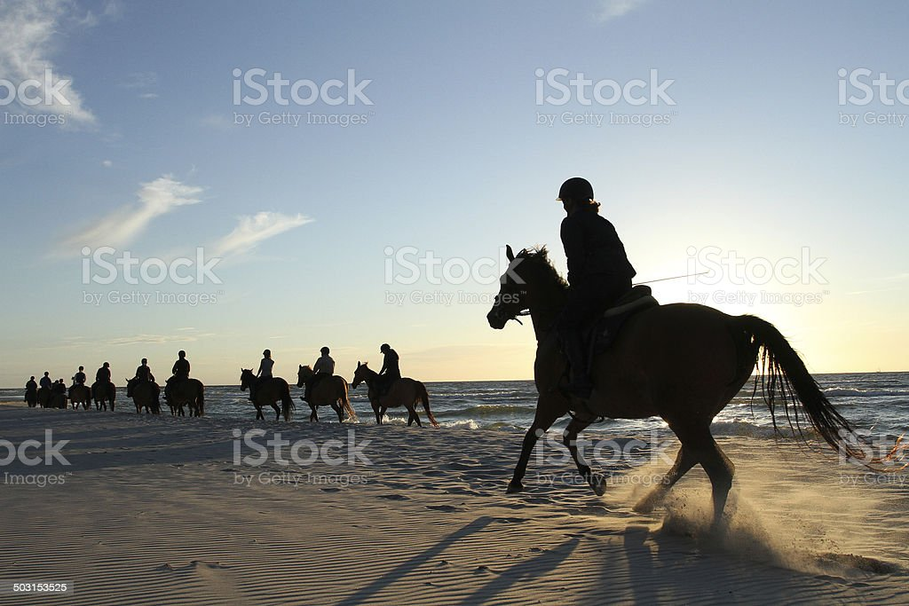 Horse riding on beach. stock photo