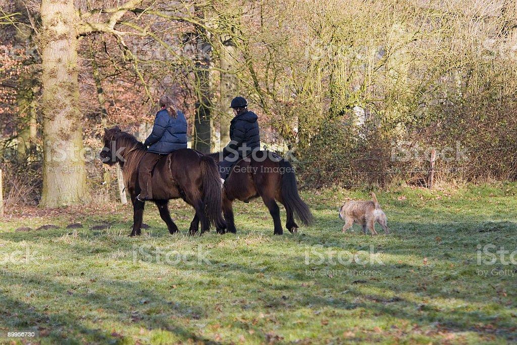Horse riding royalty-free stock photo