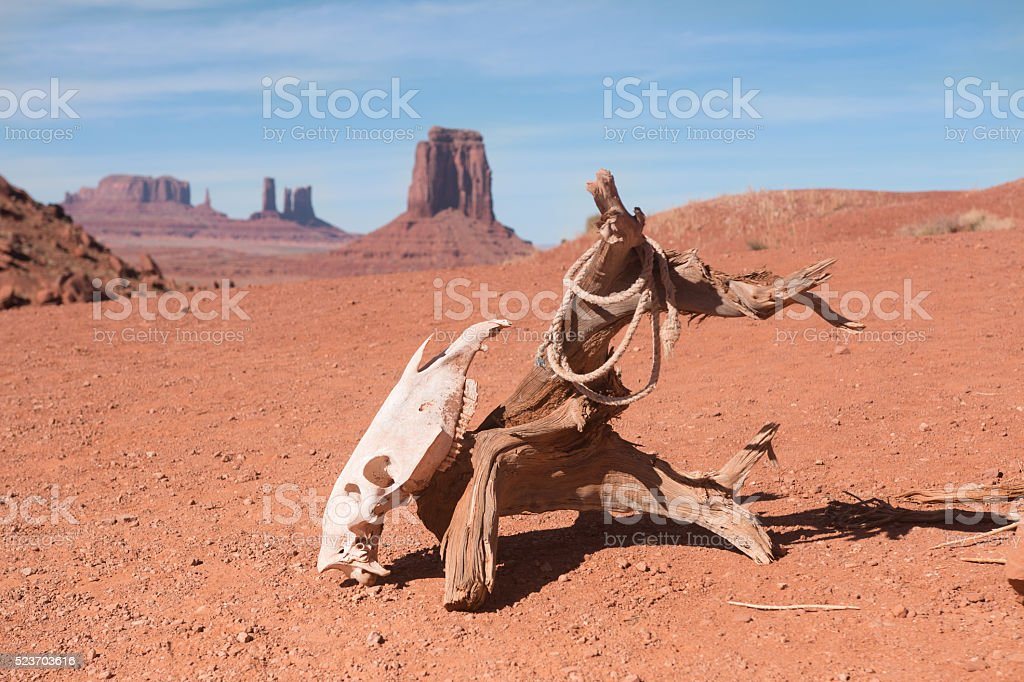 Horse scull hanging on dry log on deserted land stock photo