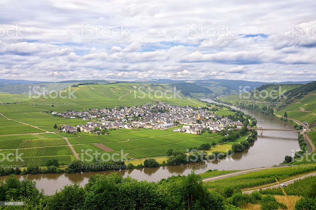 Horse shoe bend of river Mosel with  village in vineyards stock photo