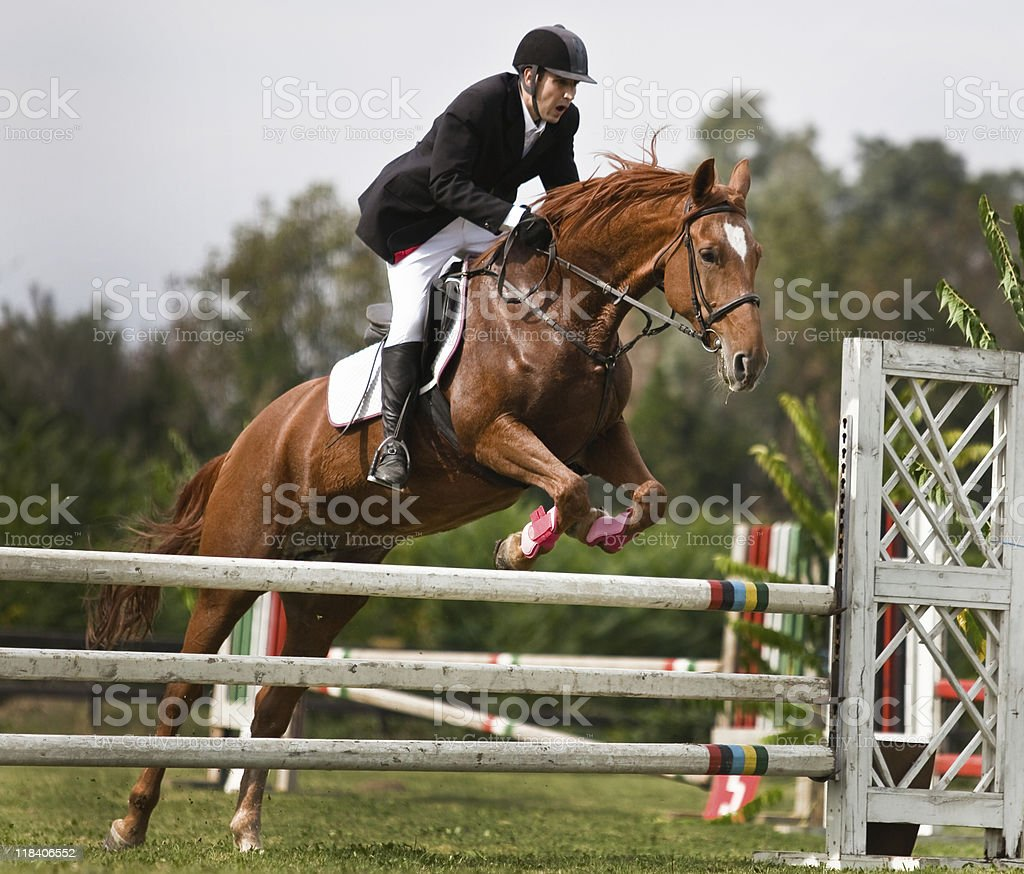 Horse Show Jumping stock photo