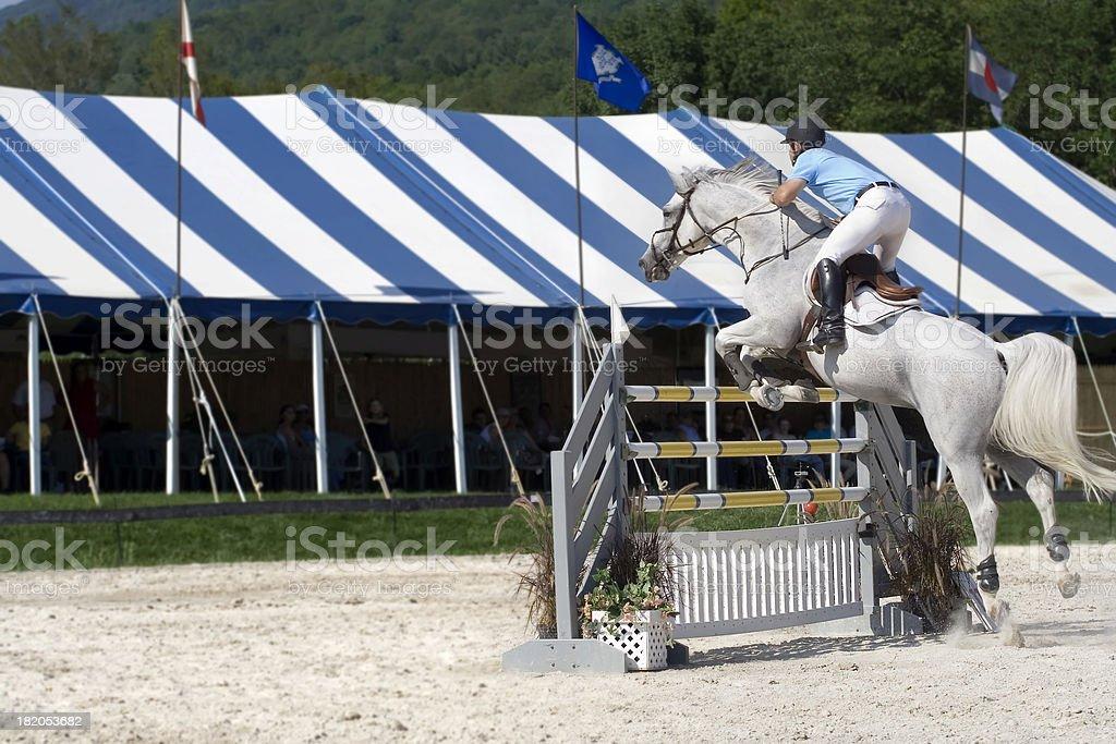 Horse Showjumping stock photo