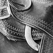 Horse Tack Close Up