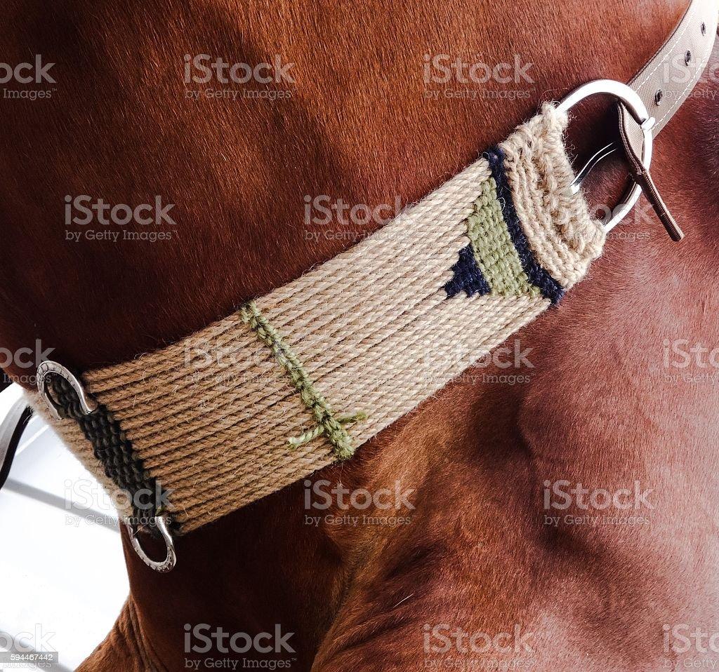 Horse Tack stock photo