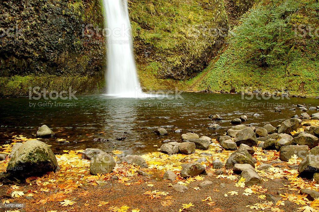 Horse Tail Falls in Oregon royalty-free stock photo