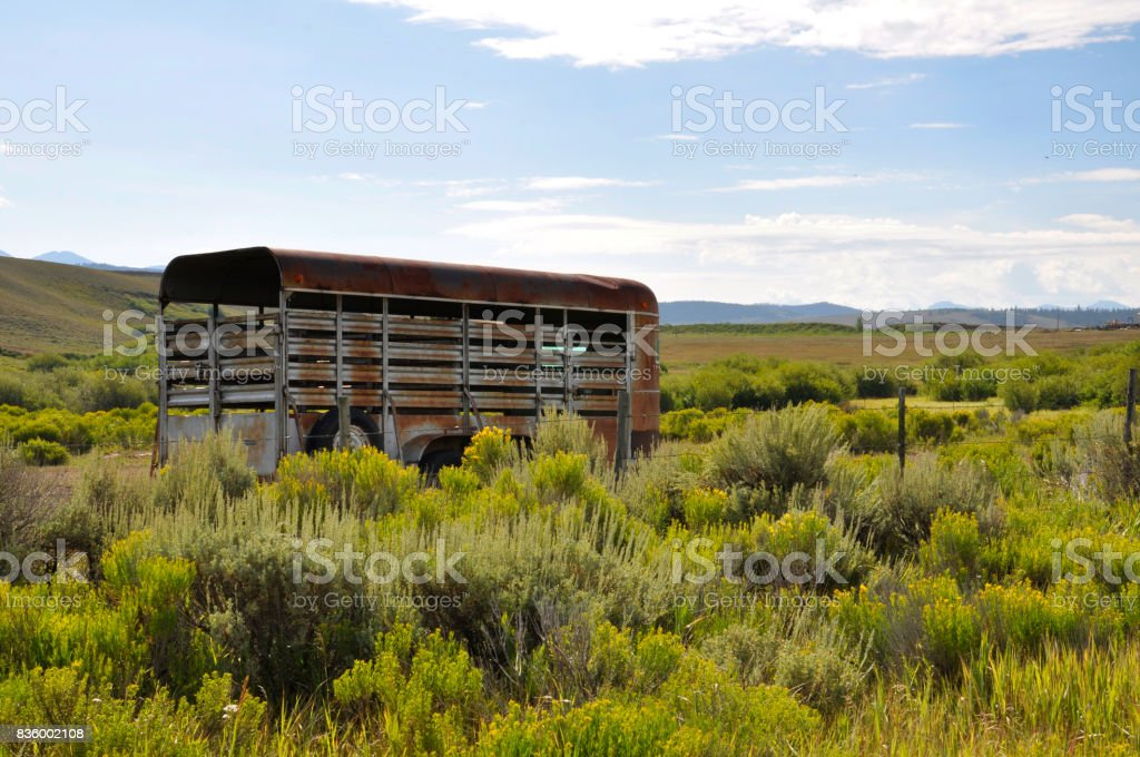 horse trailer on a prairie in Colorado stock photo