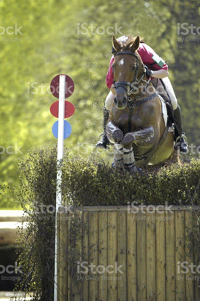 Horse Trails1 stock photo
