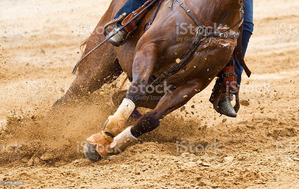 Horse Turning stock photo