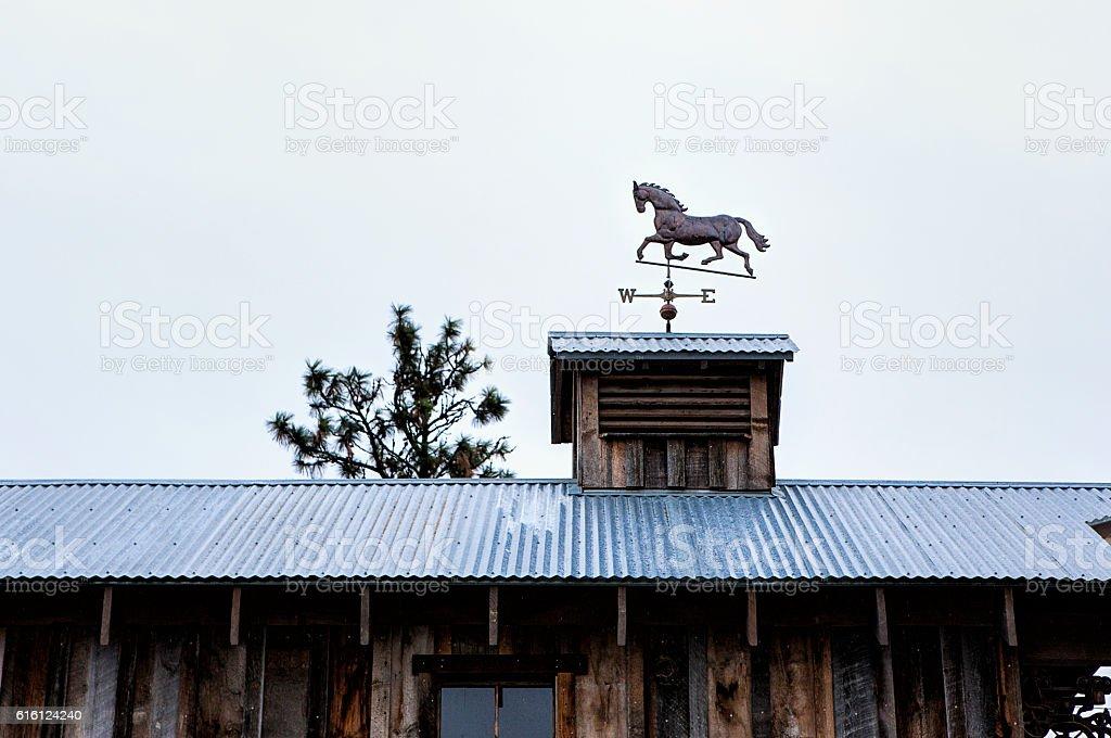 Horse weather vane on roof. stock photo