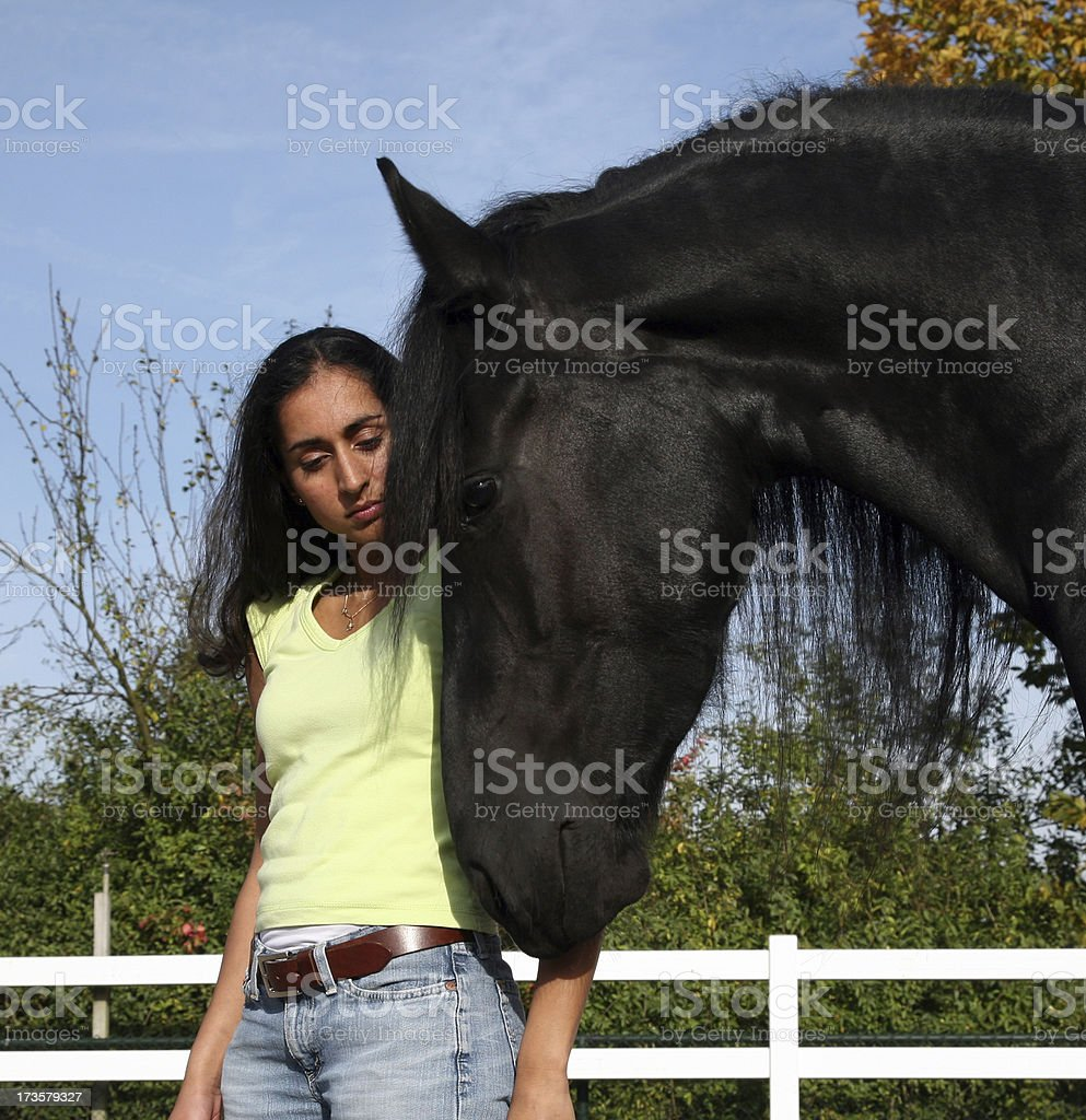 Horse whispering stock photo