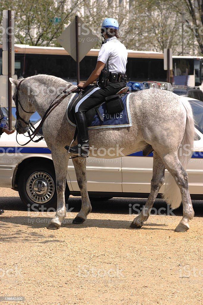 horseback royalty-free stock photo