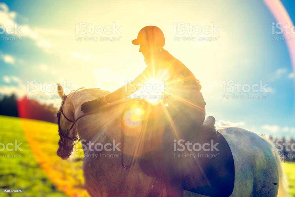 Horseback rider on a field stock photo
