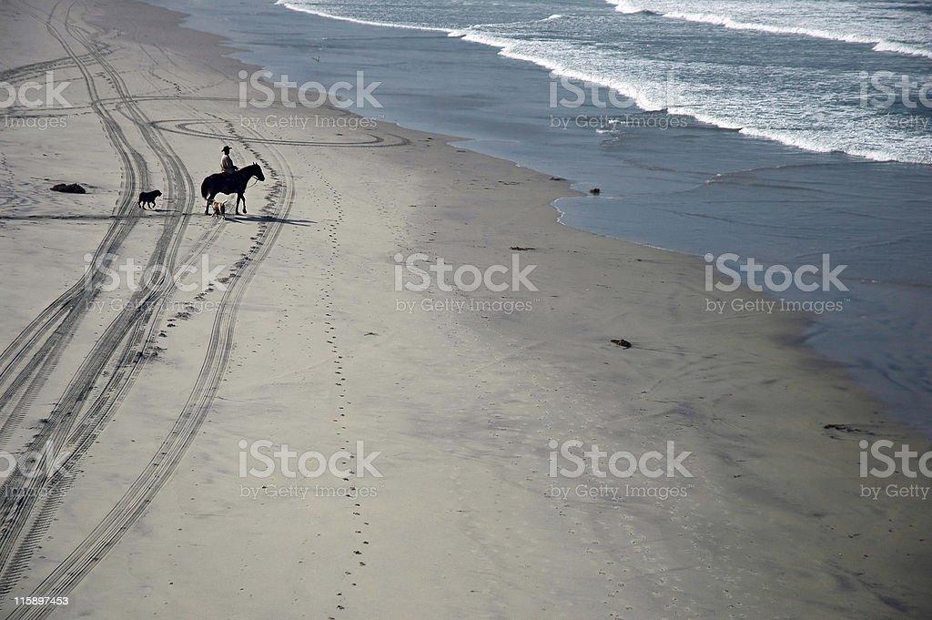 Horseback Rider royalty-free stock photo