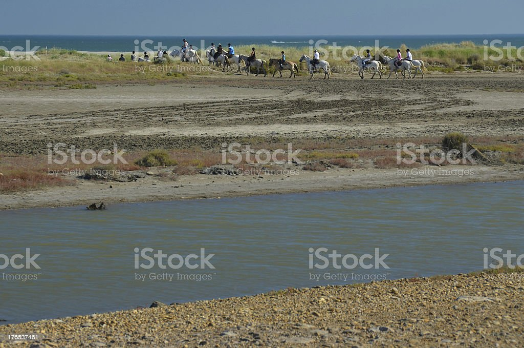 Horse-back riders on a beach in Camargue, France royalty-free stock photo