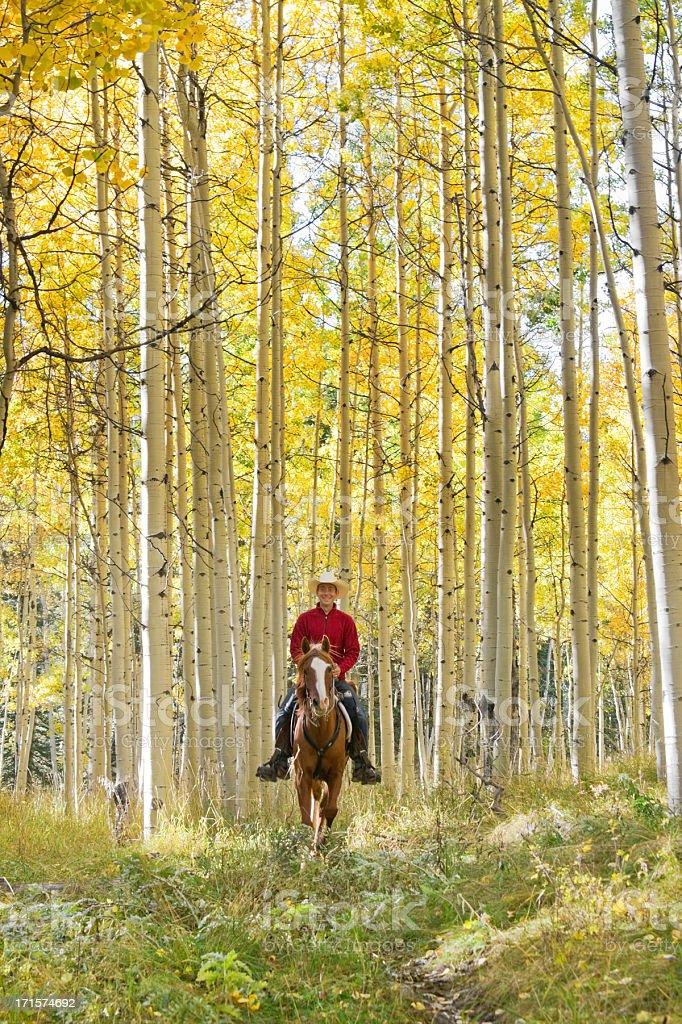 horseback riding autumn landscape stock photo