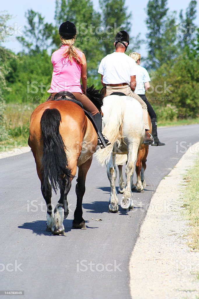 Horseback Riding in a Queue on the Street stock photo