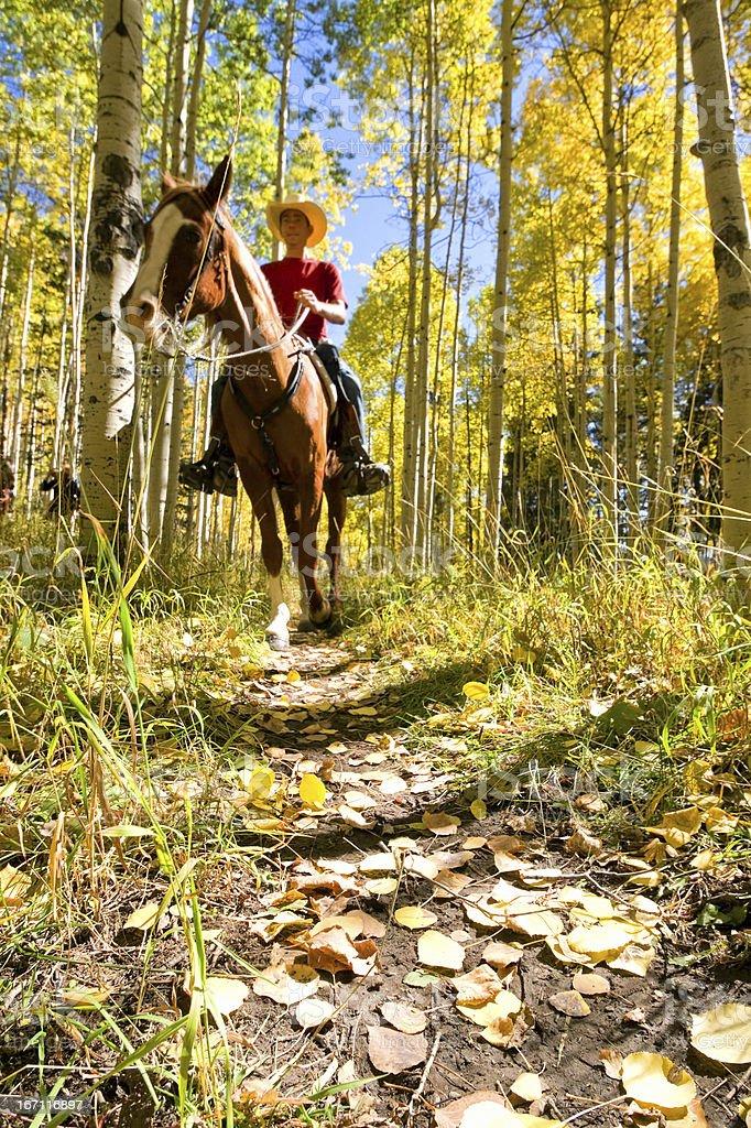 horseback riding landscape autumn royalty-free stock photo