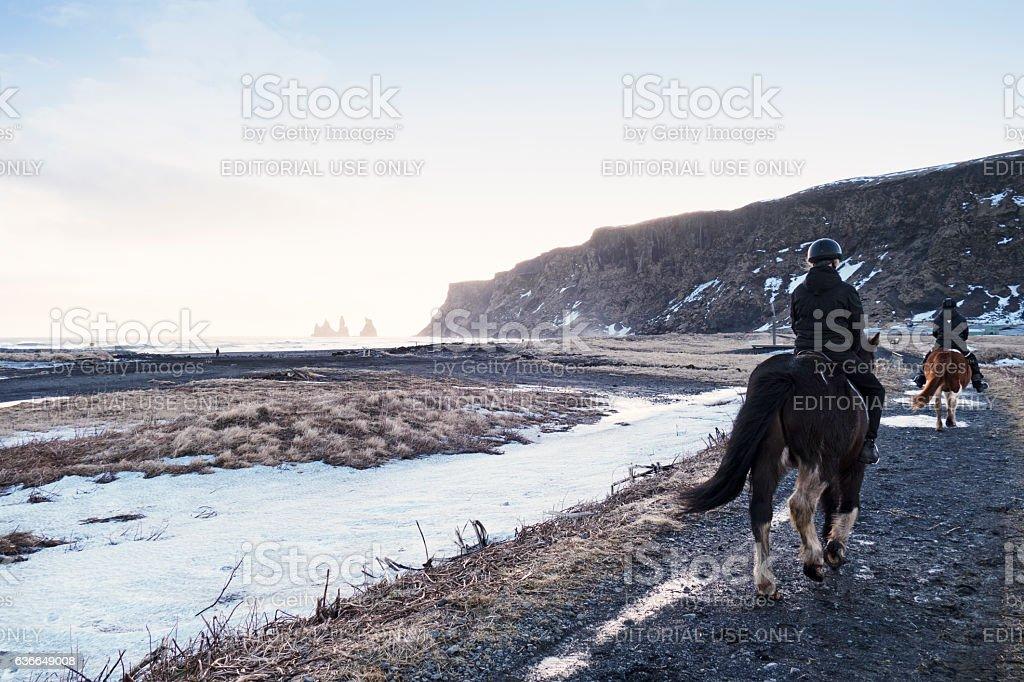 Horseback riding on the lava beach in Vik,Iceland stock photo