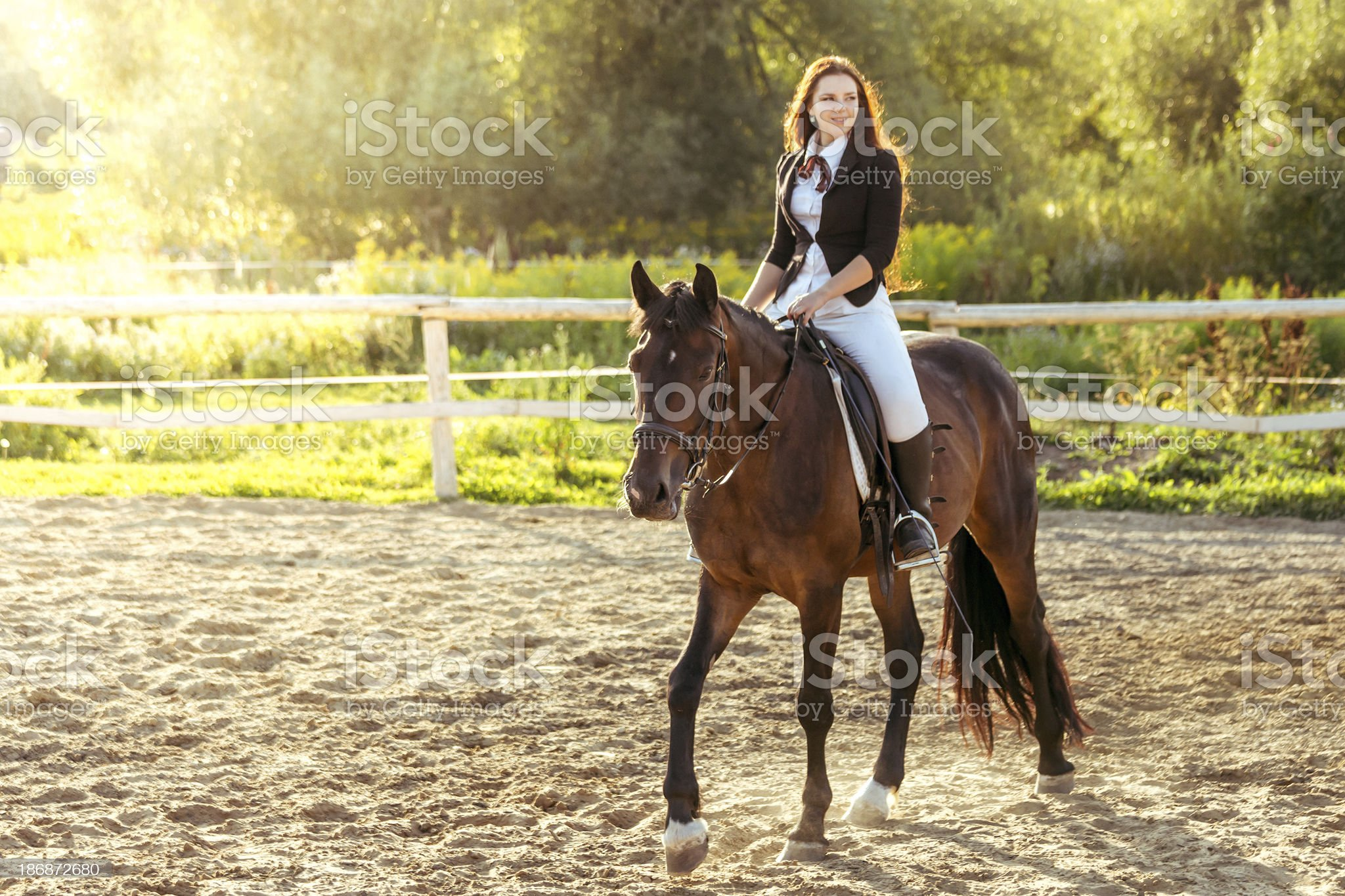 Horseback riding royalty-free stock photo