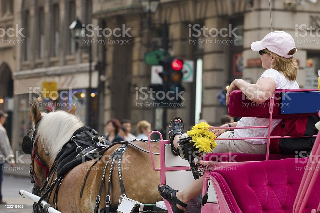 Horsecarriage ride royalty-free stock photo