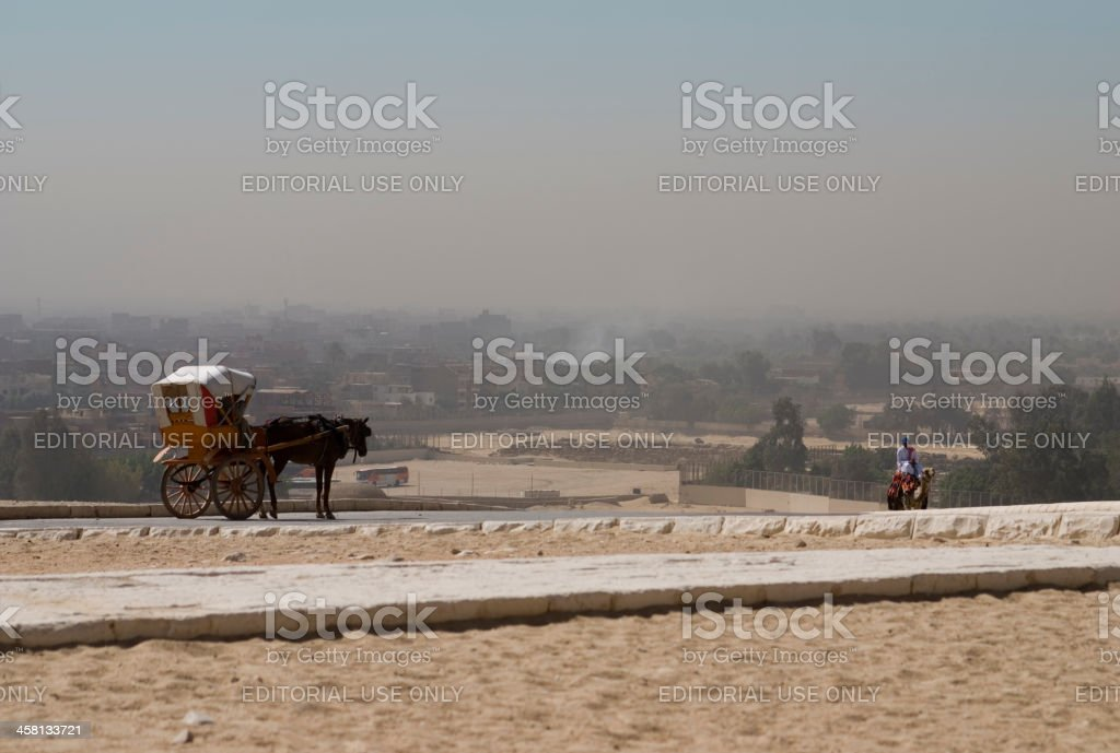 Horse-drawn carriage at the pyramids in Giza stock photo