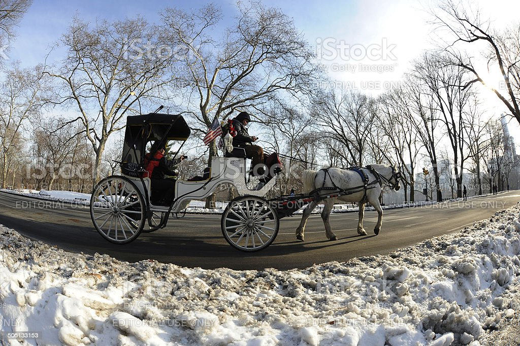 Horse-Drawn Carriage in Central Park stock photo