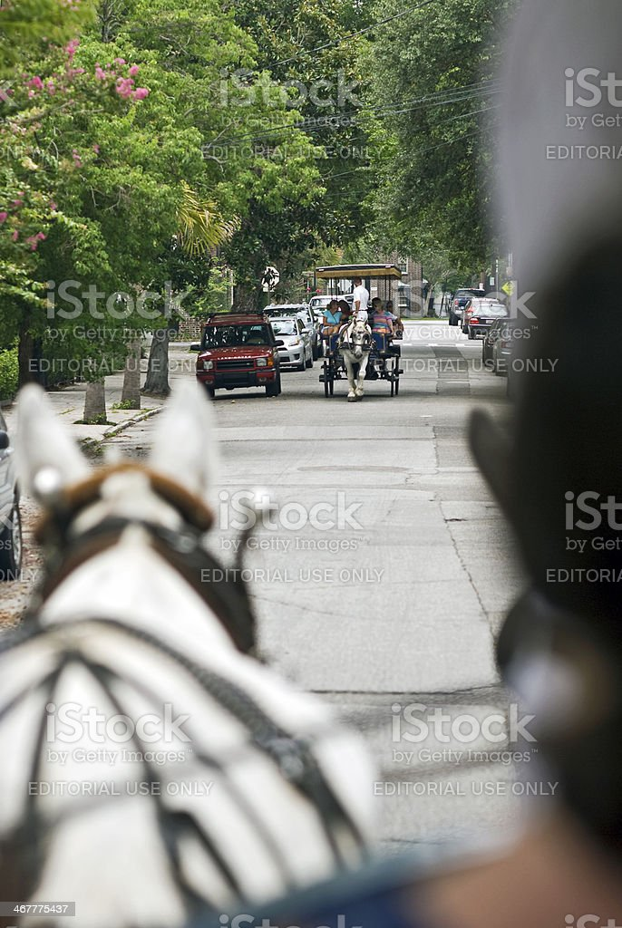 Horsedrawn Carriage Ride royalty-free stock photo