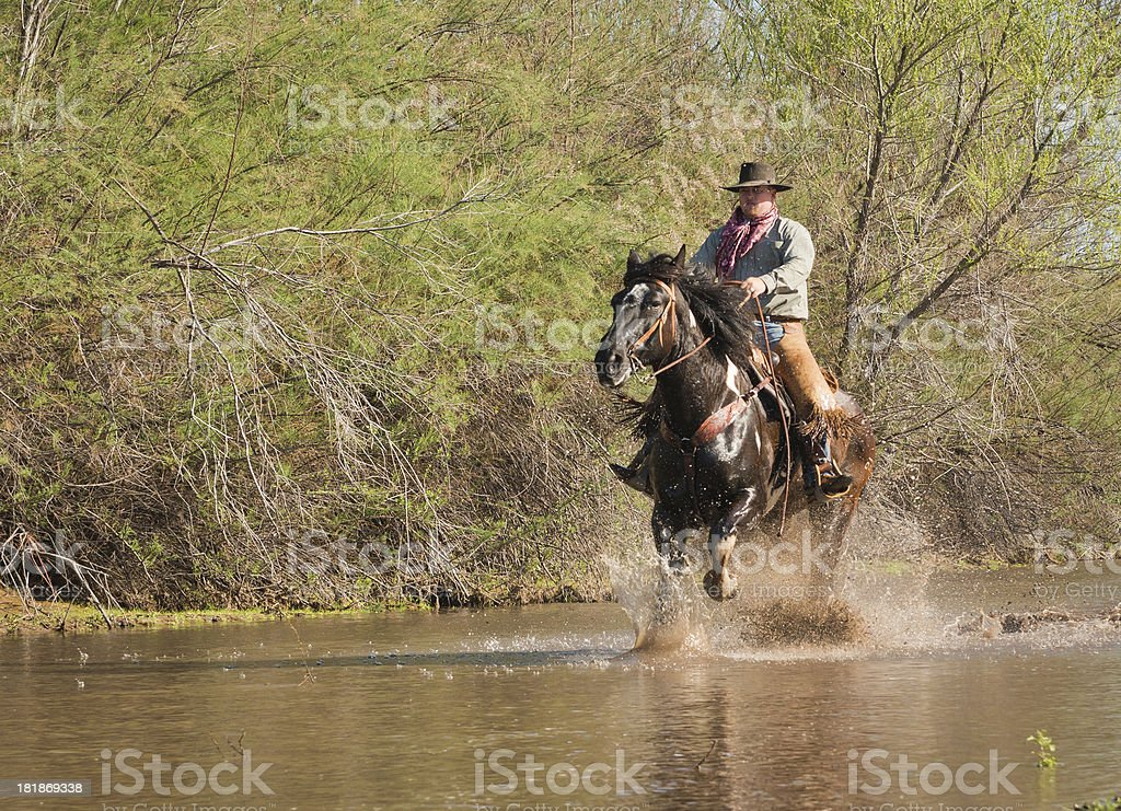 Horseman running in River royalty-free stock photo