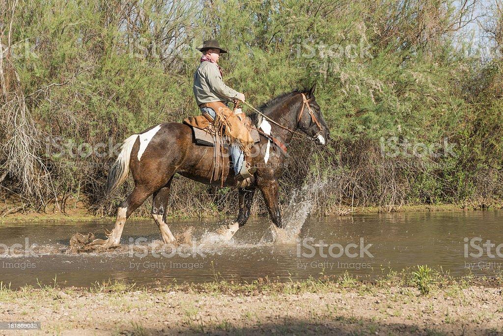 Horseman walking in River royalty-free stock photo