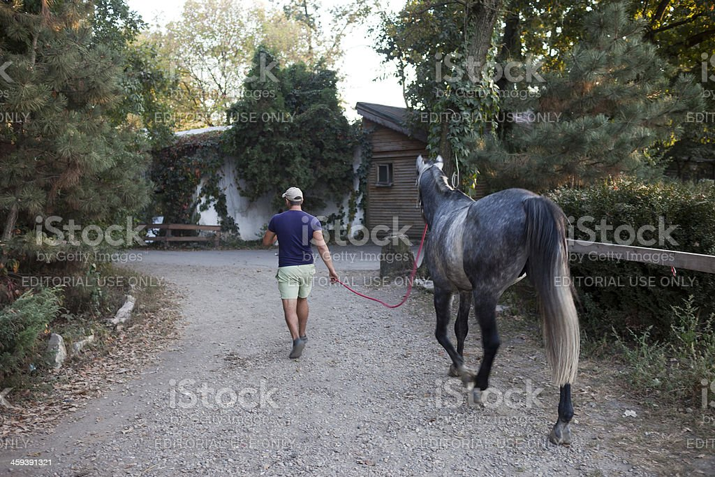 Horseman walking with his horse on a farm courtyard stock photo