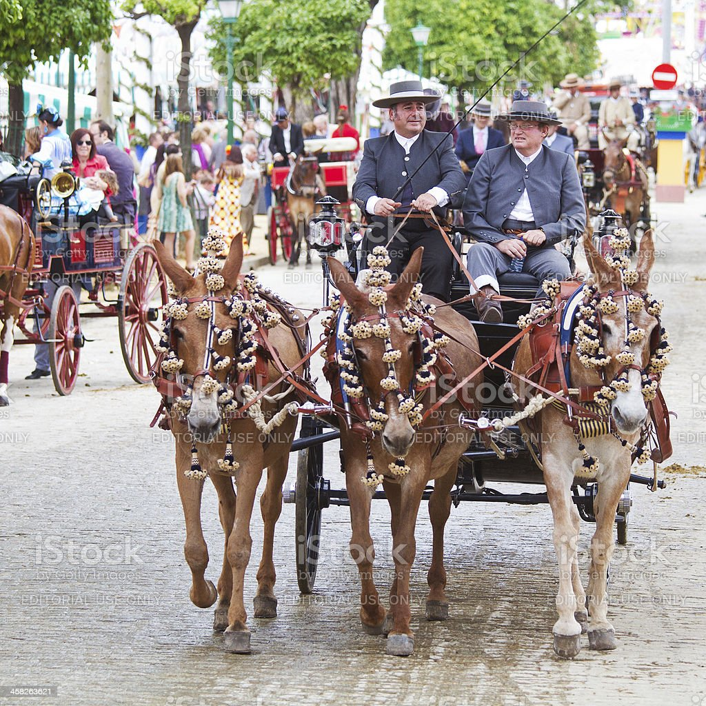horse-mule drawn carriages on the Fair of Seville stock photo