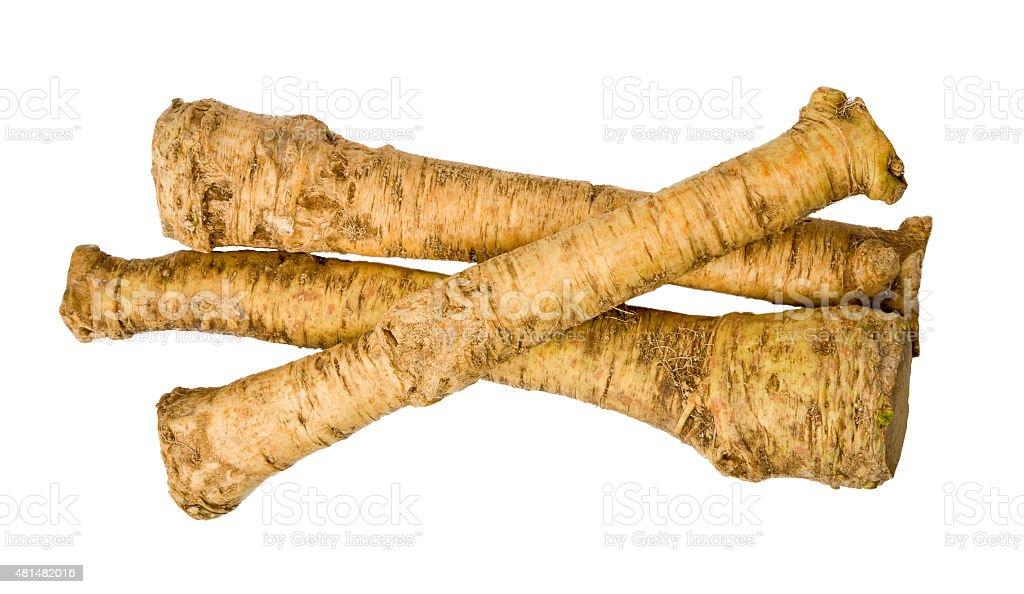 Horseradish isolated stock photo