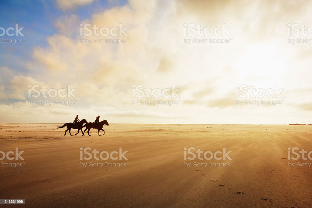 Horseriders cantering across sands on a golden late afternoon stock photo